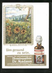 AK Dr. Madaus homöopathische Heilmittel, Bergwolferlei