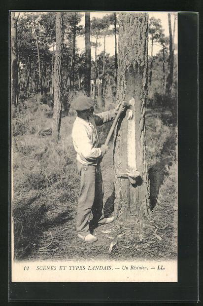 AK Scenes et Types Landais-Un Rèsinier, Forstwirtschaft 0