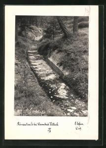 Foto-AK Adalbert Defner: Villach, Römerstrasse in der Nähe