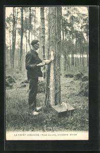 AK La Foret Landaise, Pose du zinc, troisième année, Arbeiter in der Forstwirtschaft