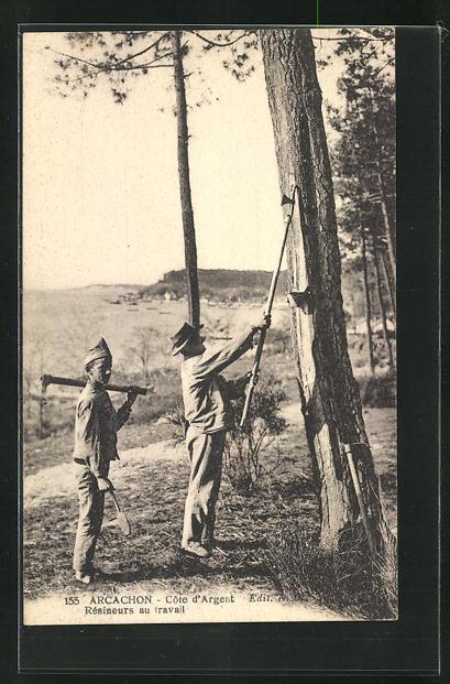 AK Arcachon, Résineurs au travail, Arbeiter in der Forstwirtschaft 0