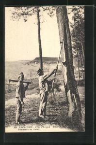 AK Arcachon, Résineurs au travail, Arbeiter in der Forstwirtschaft