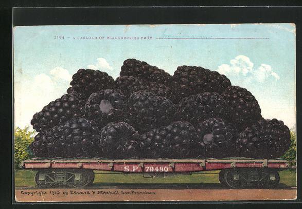 AK Bromberren als Ware auf einem Güterzug, optische Täuschung 0