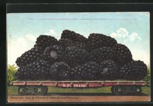 AK Bromberren als Ware auf einem Güterzug, optische Täuschung