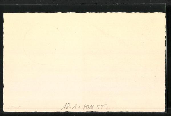AK Stettin, Landesschau Pommern, Deutsche Sammlergemeinschaft 1938, Hakenterrasse u. Mühlentor, Ganzsache 1