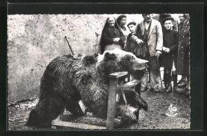 AK Les Pyrenees, Au Village, exposition d`un ours tue au cours d`une battue