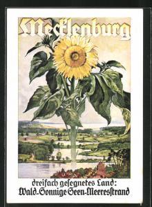 Künstler-AK Landesverkehrsverband Mecklenburg, Tourismuswerbung