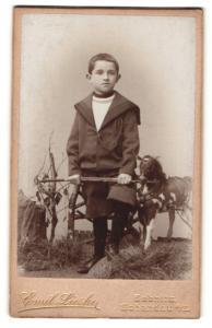Fotografie Emil Lieske, Sebnitz & Schandau a/E, Portrait Bub mit Spielzeugpferd