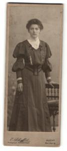 Fotografie E. Schuffert, Borna, Portrait dunkelhaarige junge Schönheit im prachtvoll besticktem Kleid