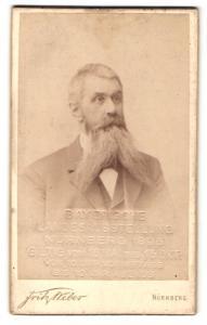 Fotografie Fritz Weber, Nürnberg, Bayerische Landesausstelklung Nürnberg 1896, Eintrittsstempel