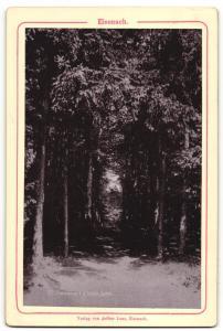 Fotografie Verlag von Arthur Laue, Eisenach, Ansicht Eisenach, Durchblick von der hohen Sonne zur Wartburg