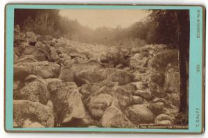 Fotografie T. Gauff, Bensheim, Ansicht Felsenmeer im Odenwald