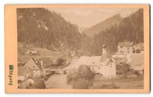 Fotografie F. Ramesmeier, Neuberg, Ansicht Mürzsteg, Panorama