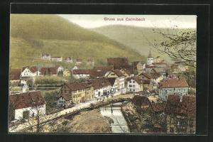 AK Calmbach, Ortsansicht mit Blick auf den Fluss, Häuser, Kirche und Landschaft