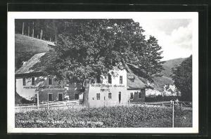 AK Mürzsteg, Heinrich Mayer`s Gasthof zur Linde