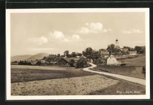 AK Berg i. Bayer. Wald, Totalansicht vom Felde aus gesehen auf Häuser und Kirchturm