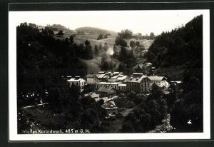 AK Freyung, Wiedes Karbidwerk mit Wald