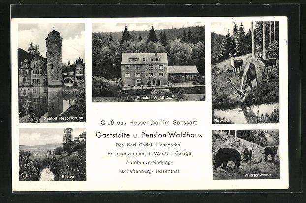 AK Hessenthal / Spessart, Gaststätte-Pension Waldhaus, Schloss Mespelbrunn, Elsava 0