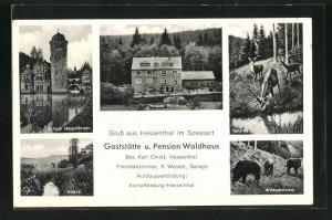 AK Hessenthal / Spessart, Gaststätte-Pension Waldhaus, Schloss Mespelbrunn, Elsava