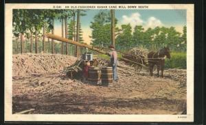 AK An old-fashioned sugar cane mill Down South