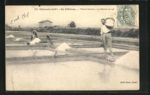 AK Charente-Infre-Ile d`Oleron, Marais Salants, La Recolte du sel, Salzabbau