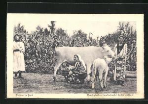 AK Rumänische Bäuerinnen in ihren Trachten melken eine Kuh