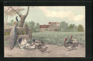 Künstler-AK Alfred Schönian: Hühner, Puten und Pfau tummeln sich auf der Wiese