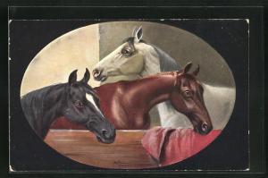 Künstler-AK Alfred Schönian: Pferde tummeln sich in ihrer Box, Bild im Passepartout-Rahmen