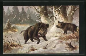 Künstler-AK Alfred Schönian: Wildschweine suchen Nahrung im Schnee, Einladung zur Jagd