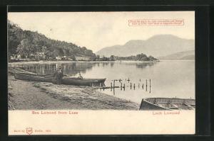 AK Loch Lomond, Uferpartie, Halt gegen das Licht