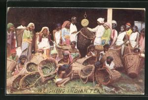 AK Arbeiter wiegen die geernteten Teeblätter