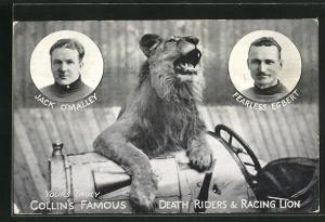 AK Collin`s famous Death Riders & Racing Lion, Jack O`Malley, Fearless Egbert