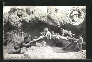 AK Carl Hagenbeck`s Wonder Zoo & Big Circus, Kindness, Not Whips, Löwen und Wärter