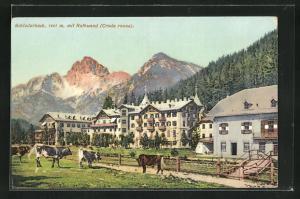 AK Schluderbach, Teilansicht mit Rothwand u. Kühen auf der Weide