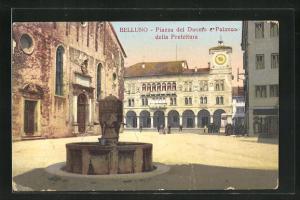 AK Belluno, Piazza del Duomo e Palazzo della Prefettura