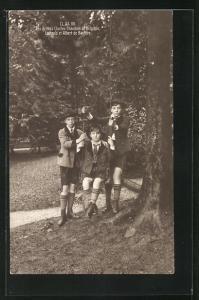 AK Les Princes Charles-Theodore de Belgique, Erbprinz Luitpold et Albert de Baviere beim Schaukeln