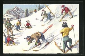 AK Katzen vergnügen sich beim Skifahren, vermenschlichte Tiere