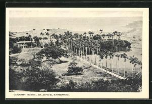 AK St. John / Barbados, Country Scene