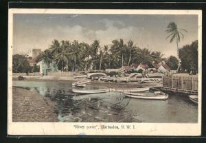 AK Barbados, River Scene