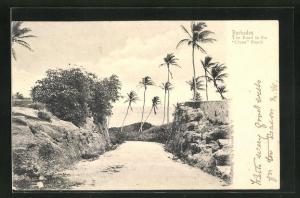 AK Barbados, the Road to the Crane Beach