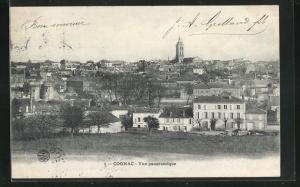AK Cognac, Vue panoramique