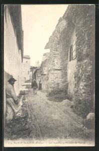 AK Ste-Foy-les-Lyon, Les Aqueducs, Chemin de Narcel