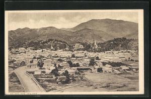 AK Nelson, Totalansicht über Häuser, Kirchen und Berge
