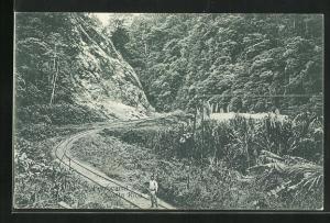 AK Costa Rica, Ferrocarril