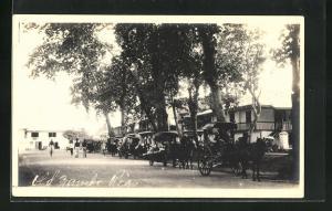 AK Zamboanga, Blick auf Strasse mit Pferdekutschen und Häuser