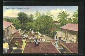 AK Grenada, Drying Trays