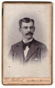 Fotografie D. Mehlert, Garding, Portrait stattlicher junger Mann mit Schnurrbart
