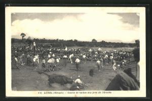 AK Lunel, Course de vaches aux près de l`Ornède