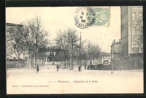 AK Montauban, Esplanade de la Halle