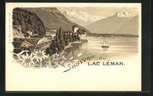 Lithographie Lac Leman, Dampfeisenbahn, Edelweiss
